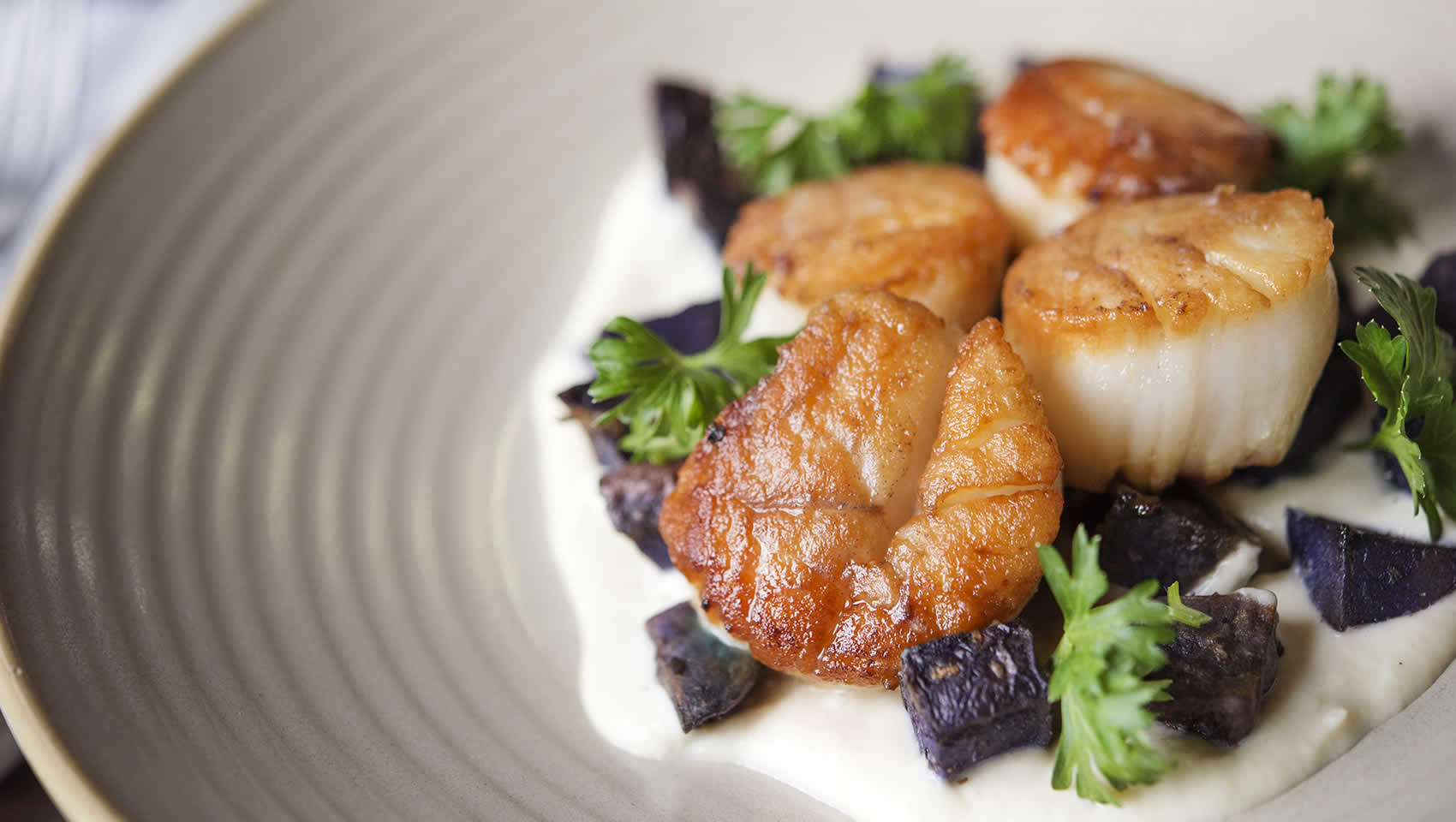 sea scallops entree